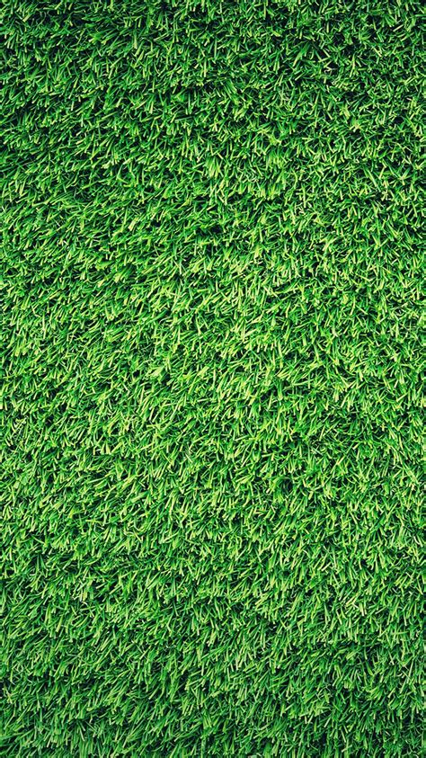 patterns in nature essay papers co iphone wallpaper nj44 grass green pattern nature