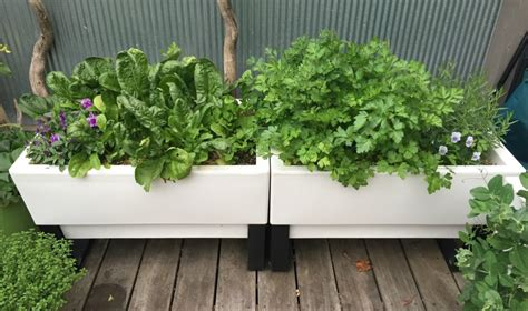 self watering vegetable garden self watering garden planter pots make vegetable gardening
