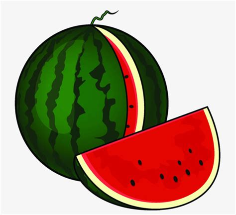 Semangka Vektor painted watermelon clipart