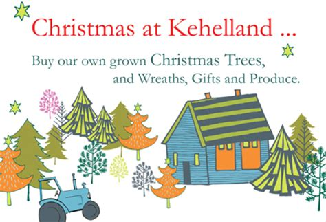 grow your own christmas tree made in america kits at kehelland kehelland trust