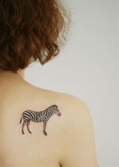 zebra tattoo ink 660 best images about lovin my zebra s on pinterest