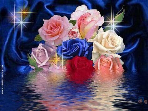 imagenes de flores sobre el agua our 1 day memory images love hd wallpaper and background