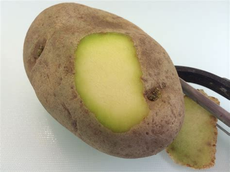 do frozen hot dogs expire can you eat green potatoes answers eatbydate