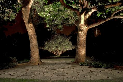 landscape lighting for trees landscape lighting trees