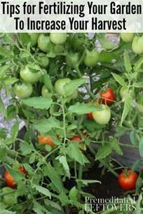 fertilizer for garden vegetable garden fertilizer can