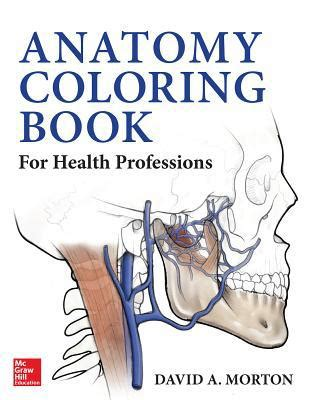 anatomy coloring book books a million anatomy coloring book for health professions by ph d