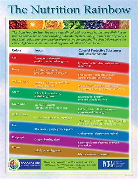 the rainbow diet a holistic approach to radiant health through foods and supplements books healthy dietary approaches for cancer patients osher