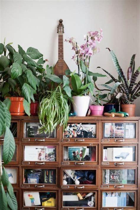 como decorar un salon de selva 161 mi casa mi selva 20 ideas para decorar con plantas de