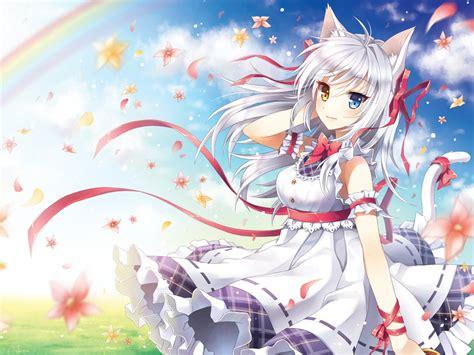 wallpaper cat girl anime cat girl with white hair wallpaper stuff to buy