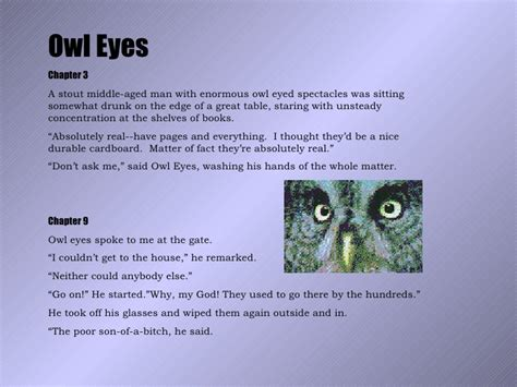 symbolism in the great gatsby the owl eyed man recurring images of the great gatsby