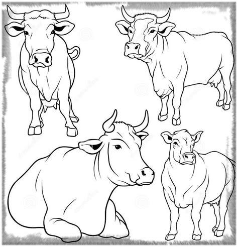 imagenes para colorear vaca las bonitas imagenes para colorear de una vaca imagenes