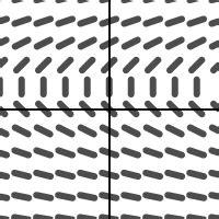 slope field calculator slope fields
