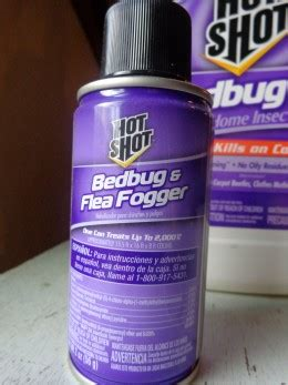 raid bed bug fogger will raid fogger kill bed bugs ants in house in summer