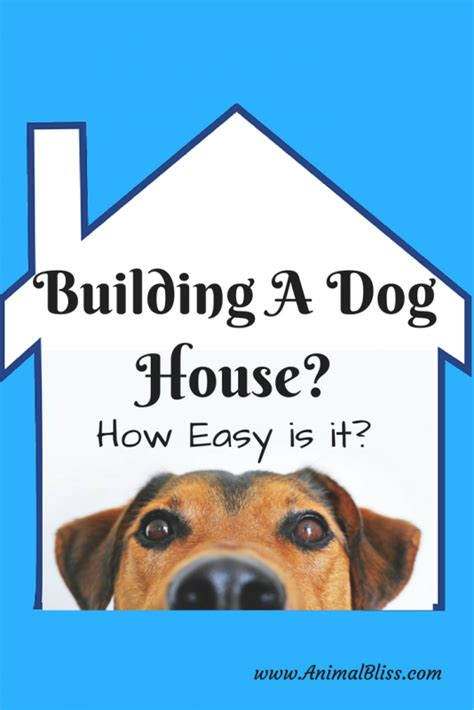 how do you build a dog house building a dog house how easy is it animal bliss
