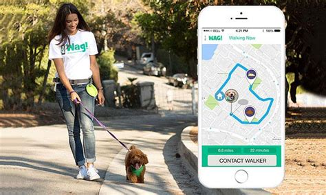wag walking app walking app wag gets 300 million investment from unlikely source top tips