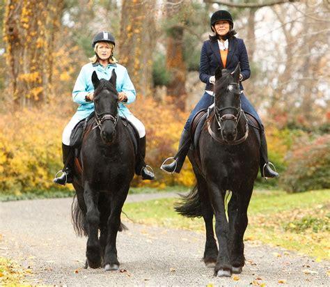 Martha Stewart Rides A Stallion by Martha Stewart Curry Horses Us