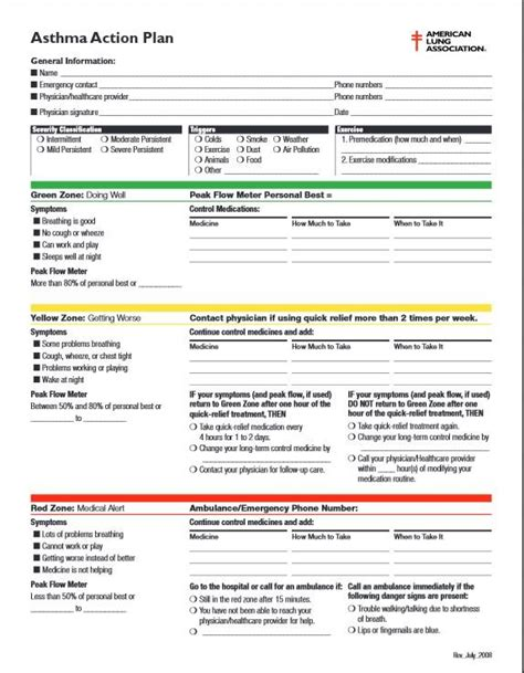 my asthma plan template pretty mentoring plan template ideas resume ideas