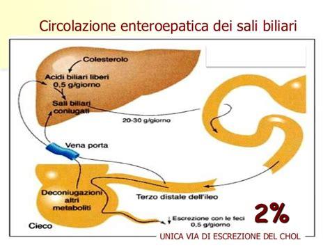 alimenti ricchi di ossalati dieta e calcoli renali