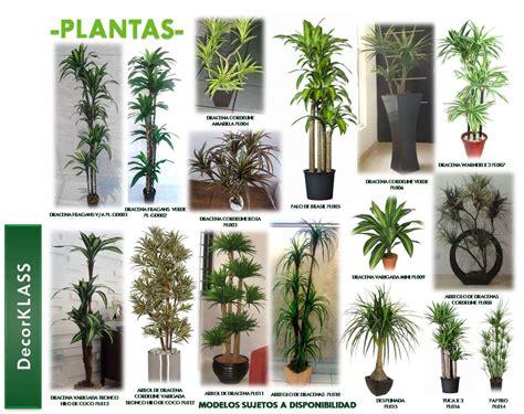 decoracion de interiores con plantas artificiales decoraci 243 n de interiores plantas naturales y artificiales