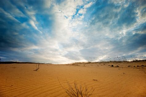 sand field  stock photo