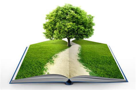 grow books grow a book turn your story idea into a workable plot