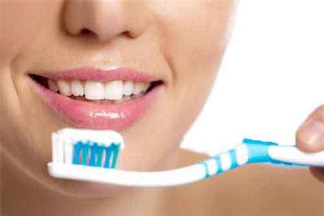 Pembersih Karang Gigi Pembersih Karang Gigi Alami Yang Murah Dan Uh Info