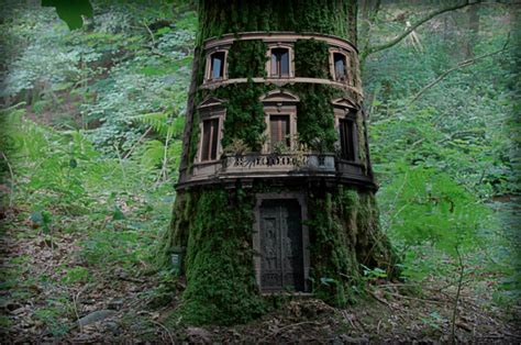 real treehouse post the most beautiful treehouses from all over the world