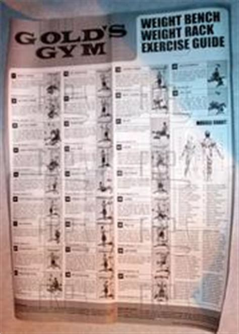 chart exercise 6039048 fitness and exercise equipment