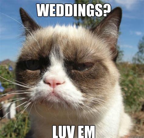 Grumpy Cat Wedding Meme - memes