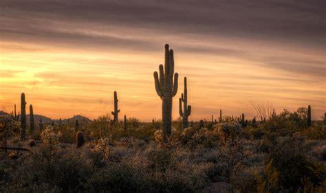 Southwestern L by Desert Southwest Sunset Photograph By Saija Lehtonen