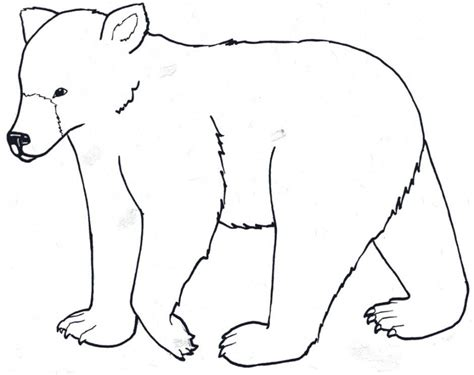simple bear coloring page outline of a bear az coloring pages