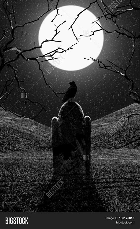 Raven on gravestone at midnight. Graveyard at night