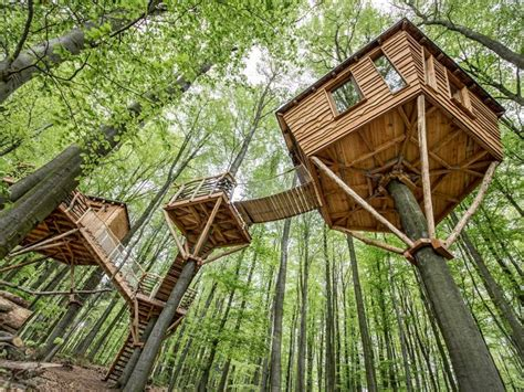 real treehouse guests can stay in treehouse cabins at this hotel resort