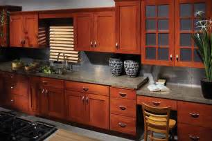 Custom Kitchen Cabinet Doors by Bertch Custom Kitchen Cabinets Amp Doors Chicago Lincoln