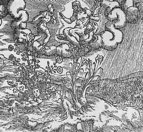 Duft Der 1558 by Ovid Metamorphoses B Iv