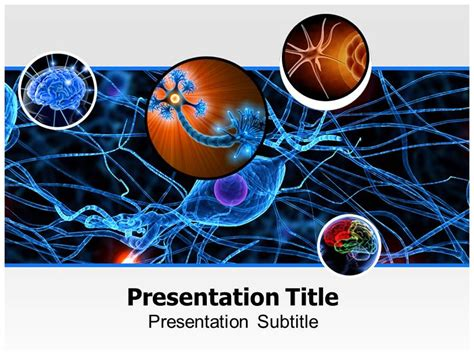 Neurology Powerpoint Templates And Backgrounds Free Neurology Powerpoint Templates