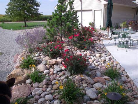 gardening rocks gardening with rocks ideas for backyard or poolside