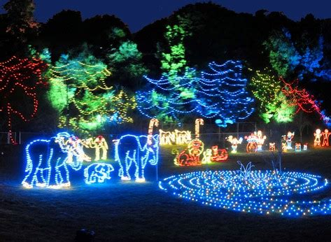 10 Christmas Light Displays In The Us Family Vacations U S Zoo Lights At The National Zoo