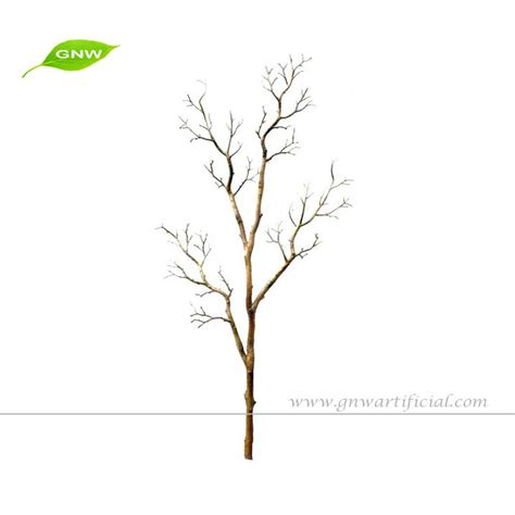 tree branches no leaves www pixshark com images