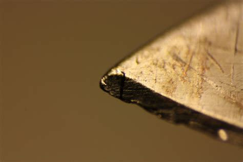 the dull blades ctho s galleries macro photos