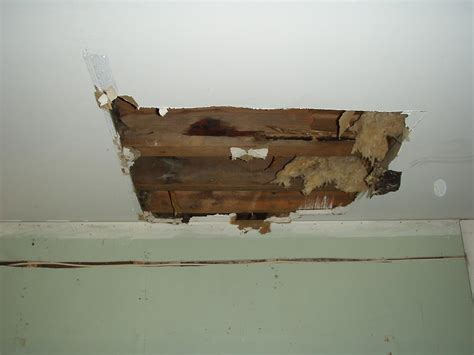 Fix Water Damaged Ceiling by Water Damage Ceiling Repair 171 Ceiling Systems