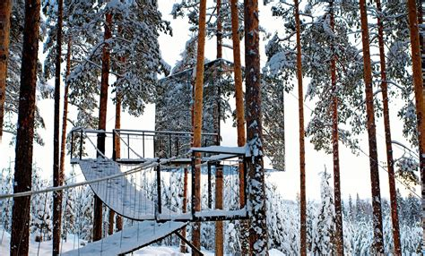 archi choong treehotel sweden tree hotel swedish architecture e 28 images tree house