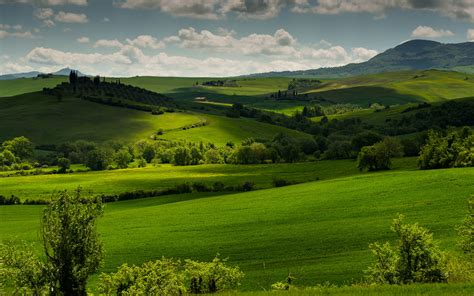 wallpaper of green fields italy tuscany green fields trees clouds dusk