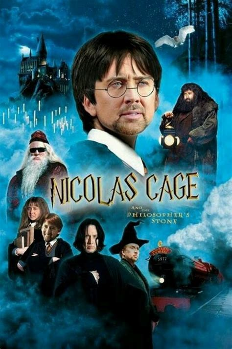 What Movie Is The Nicolas Cage Meme From - nicholas cage s face on this my heroes pinterest
