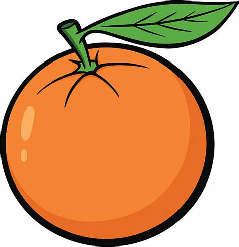 orange clipart best oranges illustrations royalty free vector graphics