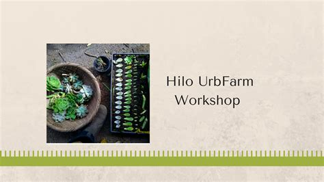 Hilo Join 1 hilo urbfarm workshops east hawaii cultural center hmoca