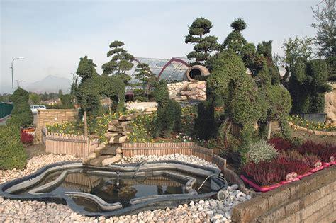 piante per giardino roccioso perenni marino fiori garden store rivoli torino reparti piante