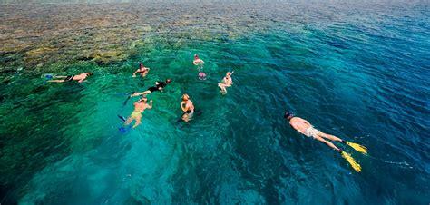 maldives snorkeling snorkel  maldives maldives snorkel