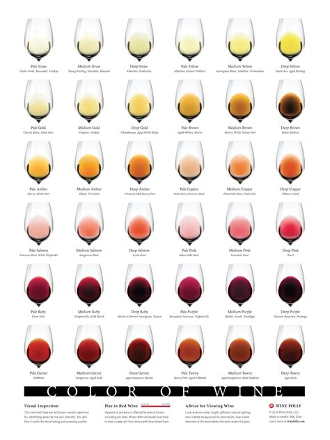 chardonnay color complete wine color chart wine folly