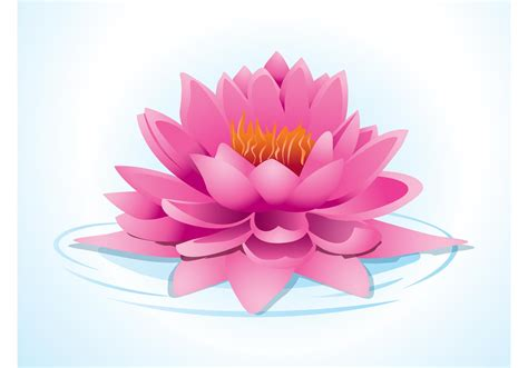 pink lotus   vector art stock graphics images